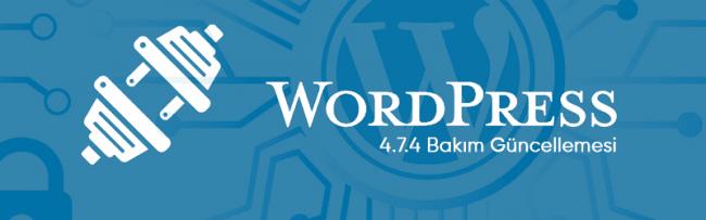 WordPress 4.7.4 Bakım Güncellemesi Yayında! 40