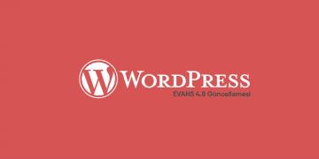 WordPress 4.8 Evans Güncellemesi Yayında 49