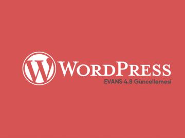 WordPress 4.8 Evans Güncellemesi Yayında 24