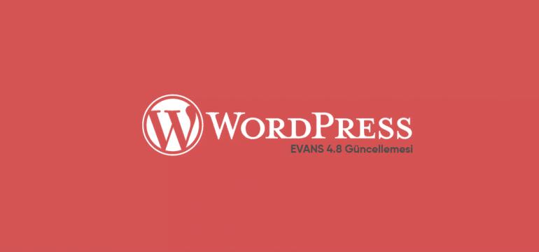 wordpress-48-evans-güncellemesi