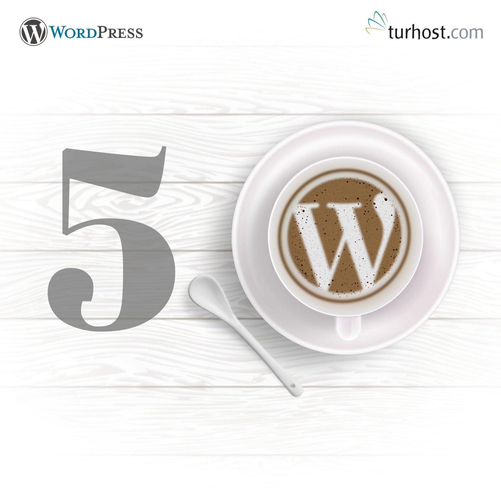 WordPress 5.0 Güncellemesi Yapılmalı mı? * Turhost Web Hosti