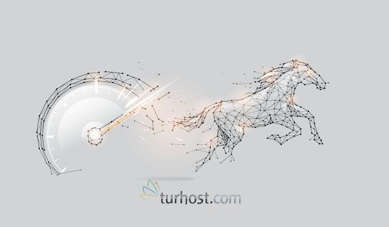 Web Sitenin Detaylı Hız Analizi Nasıl Yapılır?