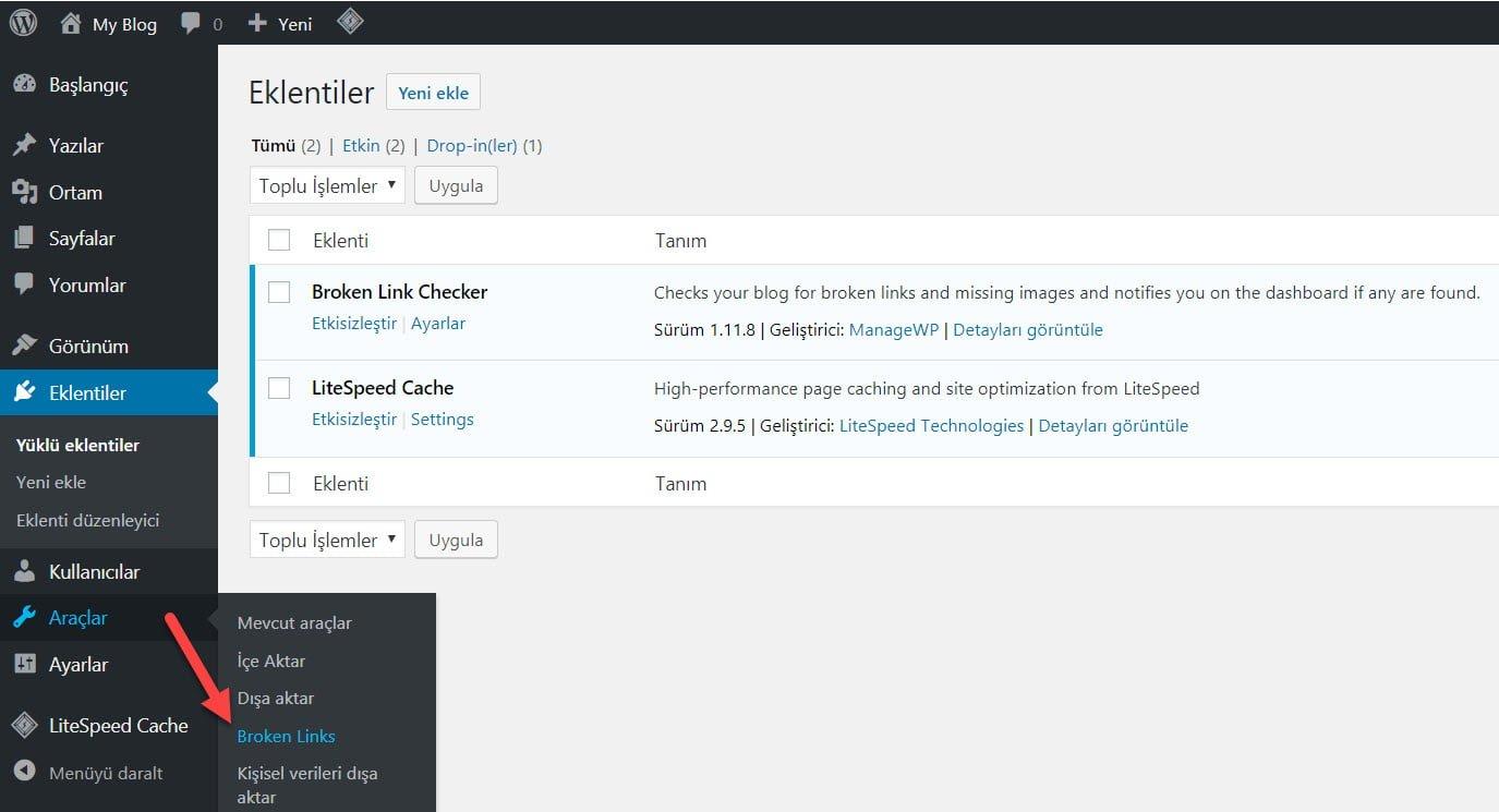 WordPress Kırık Link Nasıl Kontrol Edilir? 41