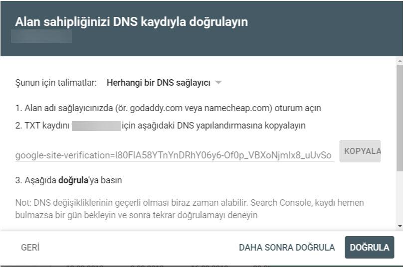 DNS DOĞRULAMA NASIL YAPILIR?