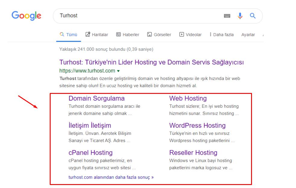 Google Aramalarında Çıkan Site İçi Bağlantılar!