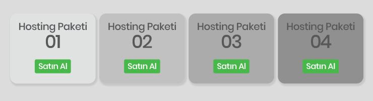Hosting Paketi seçme turhost