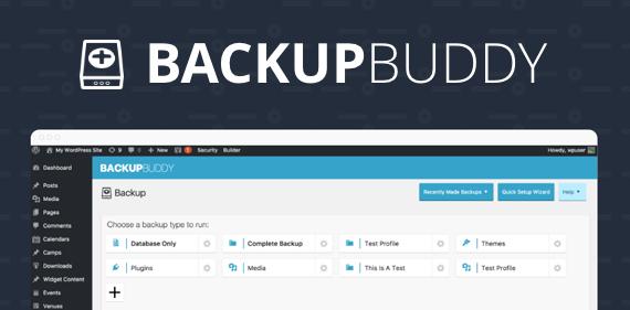 BackupBuddy  Wp taşıma eklentileri