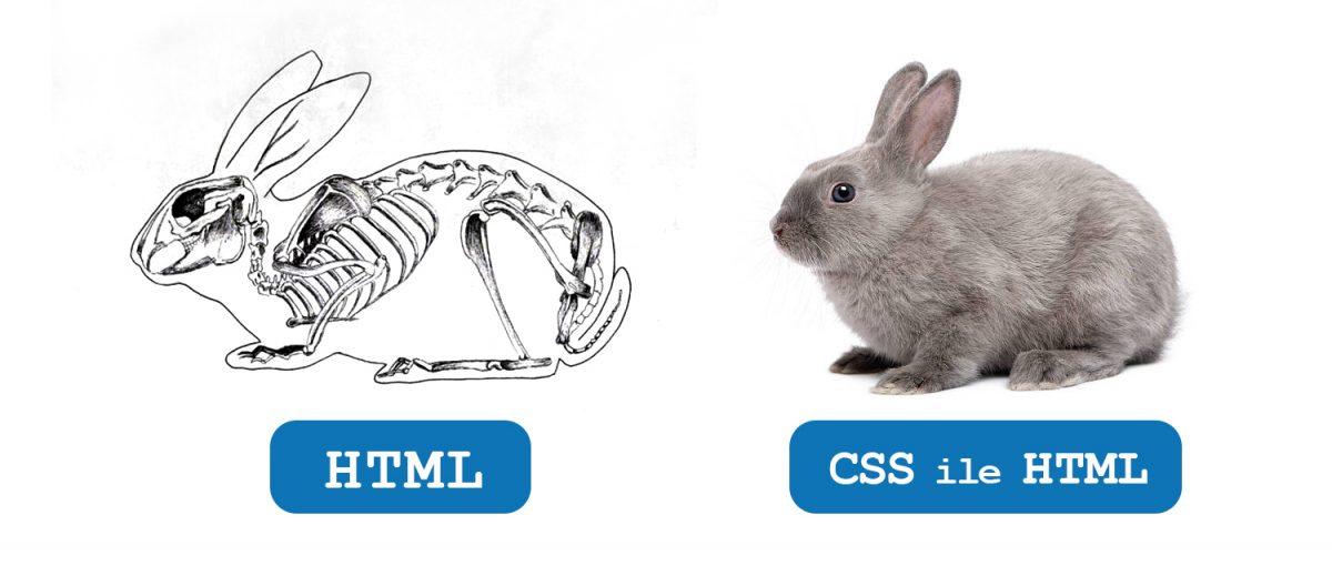 HTML ile CSS