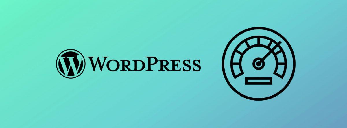 WordPress Cache Eklentisi