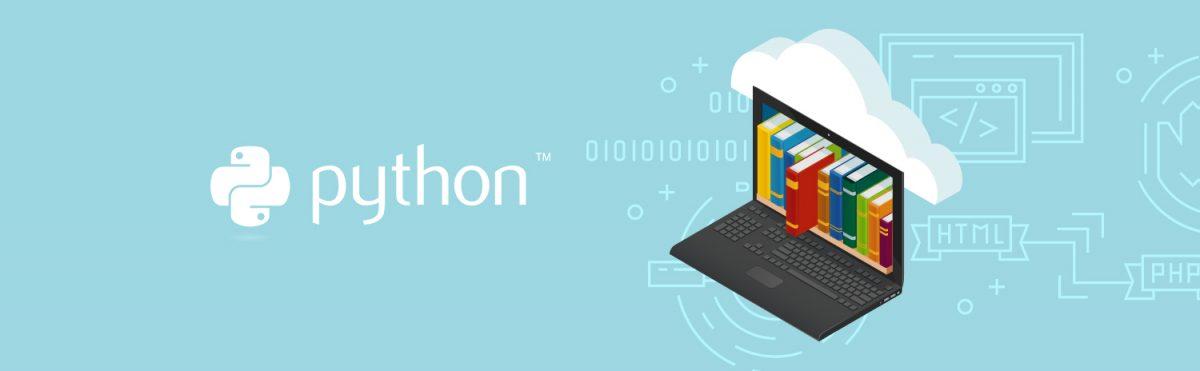 Python işletmeye katkısı