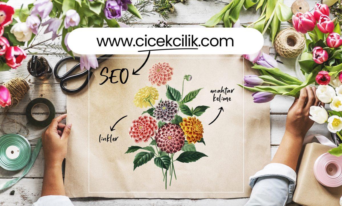 seo terimleri, domain, hosting