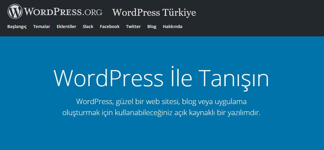 web tasarım programları, Web tasarım araçları, web tasarım platformları, WordPress
